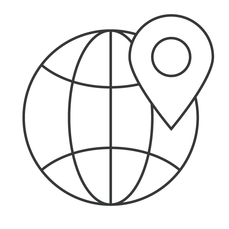 Globe with location symbol icon